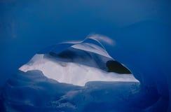 Túnel do gelo na geleira do Fox Imagens de Stock