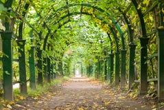Túnel do jardim Imagem de Stock Royalty Free