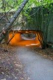 Túnel 4 do parque da descoberta fotos de stock
