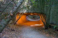 Túnel do parque da descoberta foto de stock royalty free