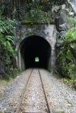 Túnel do trem Imagem de Stock Royalty Free