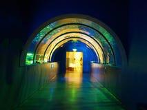 Túnel en acuario fotografía de archivo