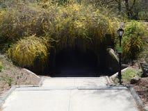 Túnel en Central Park Fotos de archivo