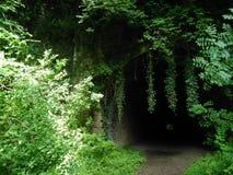 Túnel ferroviario abandonado Fotos de archivo