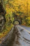 Túnel fumarento da montanha em Autumn Vertical imagens de stock