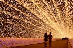 Túnel ligero en la iluminación del invierno, Mie, Japón Fotografía de archivo libre de regalías