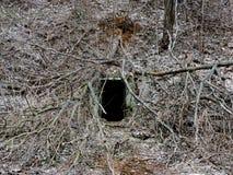 Túnel misterioso de la mazmorra con las paredes hechas de piedra Fotografía de archivo