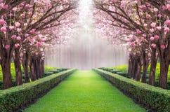 Túnel romântico fotos de stock royalty free