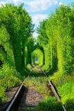 Túnel romântico do trem com raios de sol fotos de stock royalty free