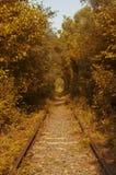 Túnel rumano del amor foto de archivo libre de regalías