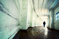Túnel velho Imagem de Stock