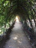 Túnel verde Fotos de archivo