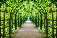 Túnel verde das árvores e dos arbustos no parque Imagens de Stock Royalty Free