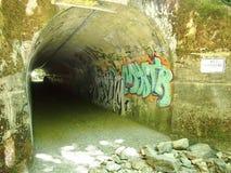 Túnel verde pequeno com luz na extremidade foto de stock royalty free