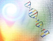 Túnel y DNA binarios Foto de archivo libre de regalías