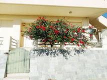 Tür achitecture Detail im Hotel, das Griechenland errichtet Lizenzfreies Stockfoto