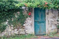 Tür im Grün Stockfotografie