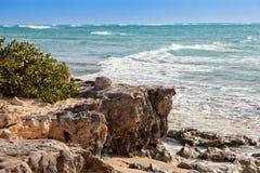 Türken u. Caicos-Karibikinsel stockbild