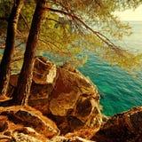 Türkis-adriatisches Meer und Kiefer, Kroatien Lizenzfreie Stockfotos