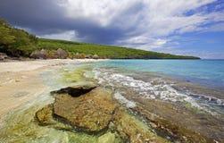 Türkis Curaçao stockbild