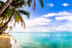 Türkis Palm Beach durch Phu-quoc Insel in Vietnam lizenzfreie stockfotos