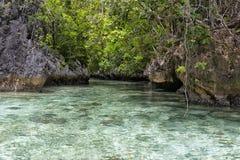 Türkis-tropisches Paradies-Strand-Ozean-Meer Crystal Water Clear lizenzfreie stockbilder