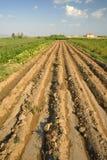 Türkischer Bauernhof Stockfoto