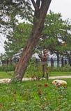Türkischer Soldat und Schlafenhund Lizenzfreie Stockfotografie