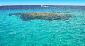 Türkiswasser-Riffsporttauchen stockfoto