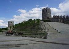 Türme Akhaltsikhe Rabati Schloss-zwei stockfoto