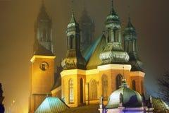 Türme der Kathedrale Lizenzfreies Stockbild