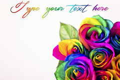 Tęcz róże na białych cegłach i drewnianym tle Pocztówka dla walentynki ` s i Macierzystego ` s dnia Fotografia Royalty Free
