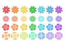 Tęcza kwiaty odizolowywający Zdjęcie Royalty Free
