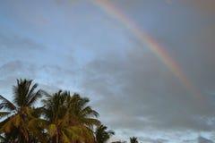 Tęcza na niebie nad coconutpalmtrees, podróż Afryka obraz stock