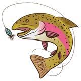 Tęcza pstrąg wektor Odizolowywający Na Białym tle Rybia maskotka wektoru ilustracja royalty ilustracja