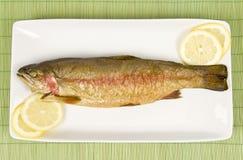 tęcza rybną wędzonego węgorza Obrazy Royalty Free