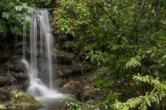 Tęcza Spada w tęcz wiosen stanu parku, Floryda, usa Fotografia Royalty Free