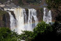 Tęcza w Iguazu siklawie Argentyna, Ameryka Południowa/ obraz stock