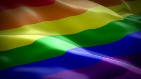 Tęczy chorągwiany wideo Odosobniony falowanie w wiatrze Realistyczny homoseksualista flagi tło Tęcza loopingu Chorągwiany zbliżen ilustracji