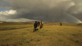 Tęczy cwałowania koń Obrazy Royalty Free