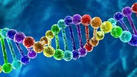 Tęczy DNA - deoxyribonucleic kwasu animacja royalty ilustracja