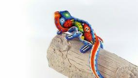 Tęczy iguana Odizolowywający zakończenie up Obrazy Stock
