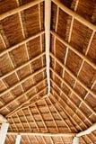 tęsk dach pokrywać strzechą Zdjęcie Stock