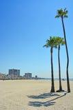 Tęsk plaża, CA Obrazy Stock
