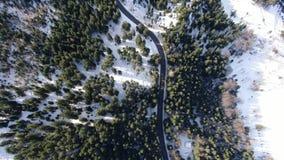 Tęsk wijąca droga przez lasu z udziałami śnieg, odgórny widok w 4k zbiory wideo