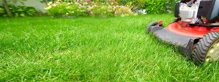 tła ścinku odosobniony gazonu kosiarza ścieżki biel Zdjęcie Royalty Free