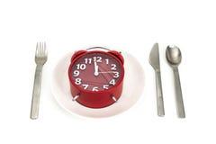 tła śmieszny gwinei lunch nad świniowatym portreta czas biel Zdjęcie Stock