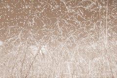 tła błękitny bożych narodzeń chmur kolorów skład zakrywający płatki zadawalają portfolio bogactwo widzią sylwetek nieba śniegu św Obrazy Royalty Free