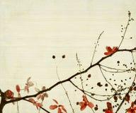 tła bambusowa kwiatu ulistnienia czerwień ilustracji