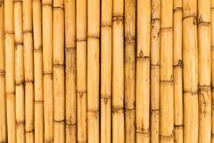 tła bambusowa use ściana Fotografia Stock